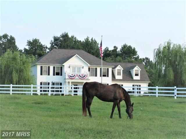 13448 Granview Road, King George, VA 22485 (#KG10088749) :: Pearson Smith Realty
