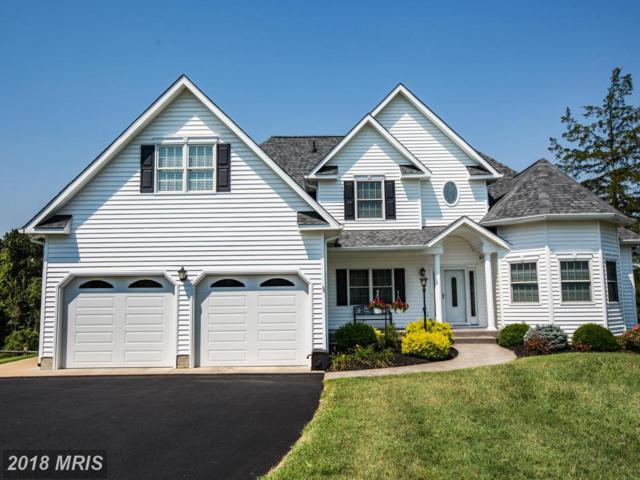 33 Woolfolk Drive, Mineral, VA 23117 (#LA10027970) :: The Maryland Group of Long & Foster
