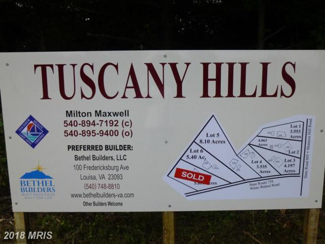 Shannon Hill Road, Louisa, VA 23093 (#LA9744955) :: Pearson Smith Realty