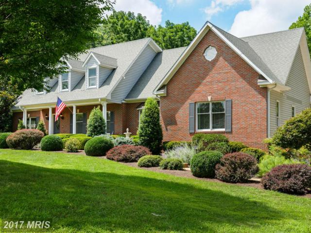 41950 Saddlebrook Place, Leesburg, VA 20176 (#LO10015819) :: Pearson Smith Realty