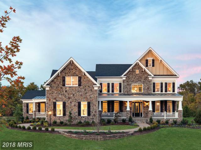 41456 Lavender Breeze Circle, Aldie, VA 20105 (#LO10069764) :: LoCoMusings