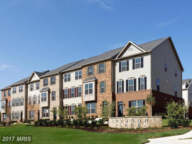 43468 Old Ryan Road, Ashburn, VA 20148 (#LO10092922) :: LoCoMusings
