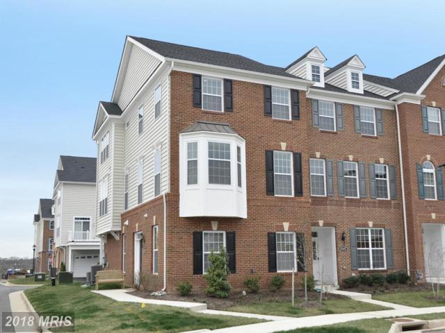 43009 Atoka Manor Terrace, Ashburn, VA 20148 (#LO10094695) :: LoCoMusings