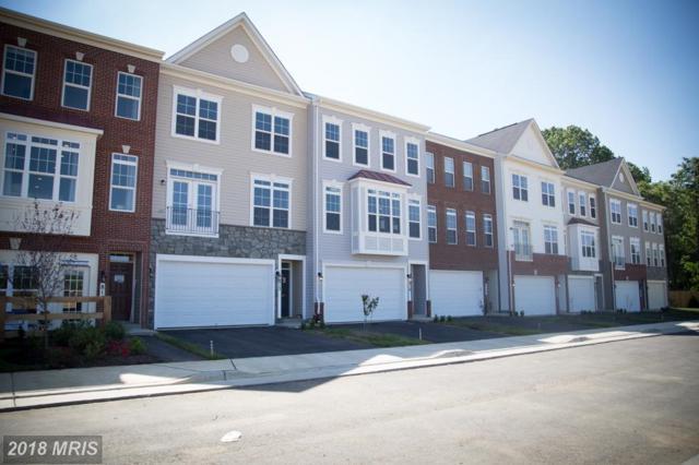 242 Upper Brook Terrace, Purcellville, VA 20132 (#LO10097097) :: LoCoMusings
