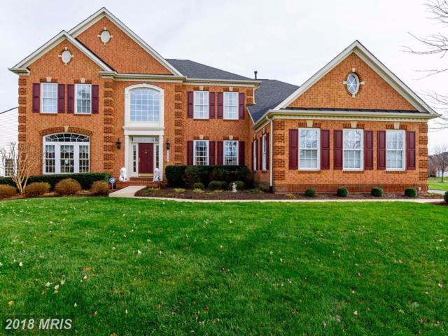 42554 Unbridleds Song Place, Chantilly, VA 20152 (#LO10110324) :: Pearson Smith Realty