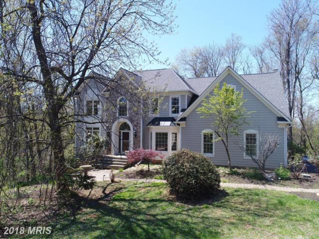 14987 Thicket Court, Waterford, VA 20197 (#LO10178512) :: LoCoMusings