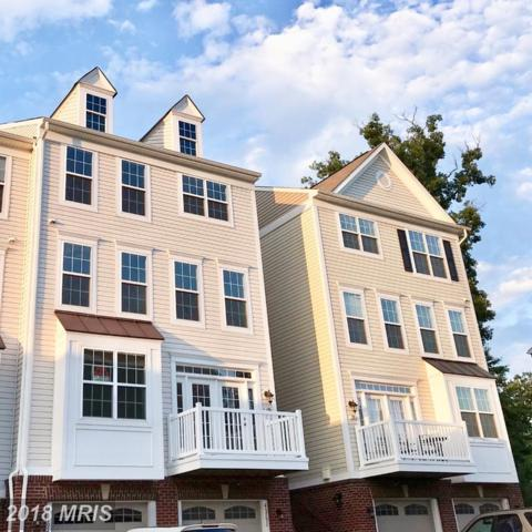 45792 Winding Branch Terrace, Sterling, VA 20166 (#LO10291161) :: Charis Realty Group