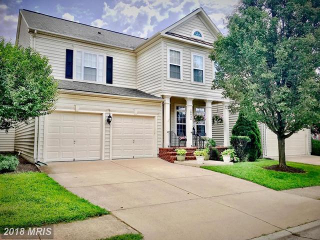 20946 Winola Terrace, Ashburn, VA 20147 (#LO10316288) :: The Greg Wells Team