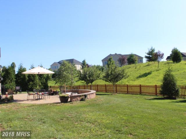 24332 Eagles Landing Place, Aldie, VA 20105 (#LO10330131) :: Labrador Real Estate Team