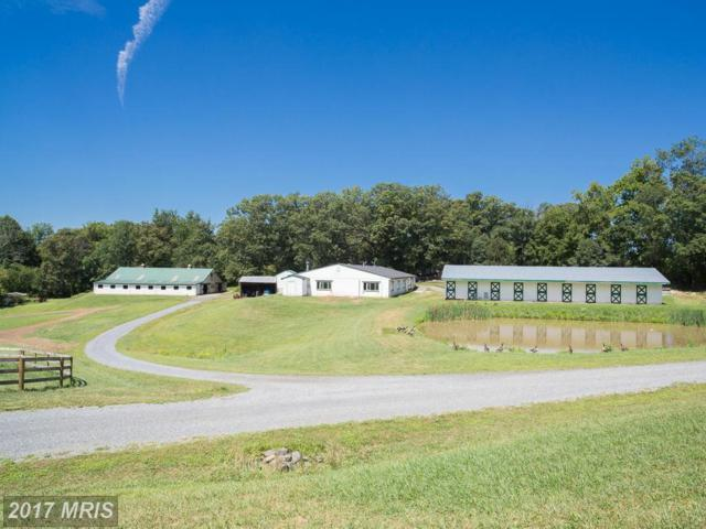 35485 Millville Road, Middleburg, VA 20117 (#LO8731170) :: Pearson Smith Realty