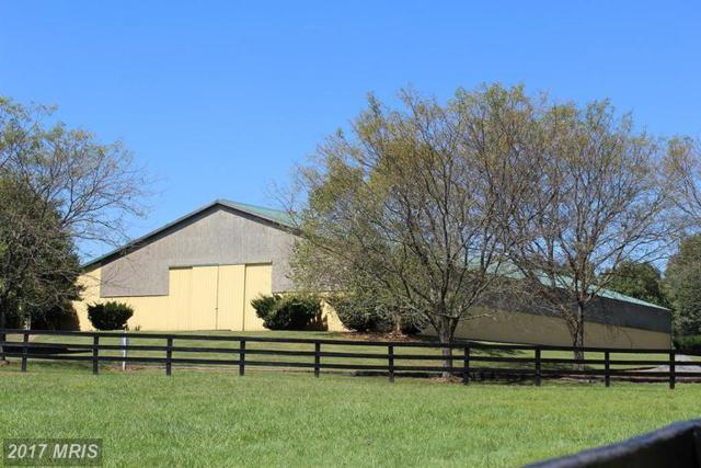 20370 Woodtrail Road, Round Hill, VA 20141 (#LO8758027) :: LoCoMusings