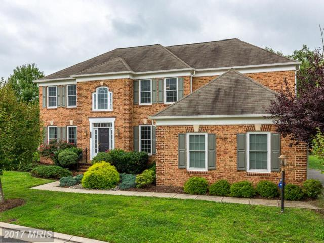 21135 White Clay Place, Leesburg, VA 20175 (#LO9010794) :: Pearson Smith Realty