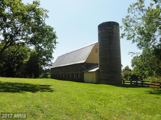 17864 Silcott Springs Road, Purcellville, VA 20132 (#LO9615549) :: Pearson Smith Realty
