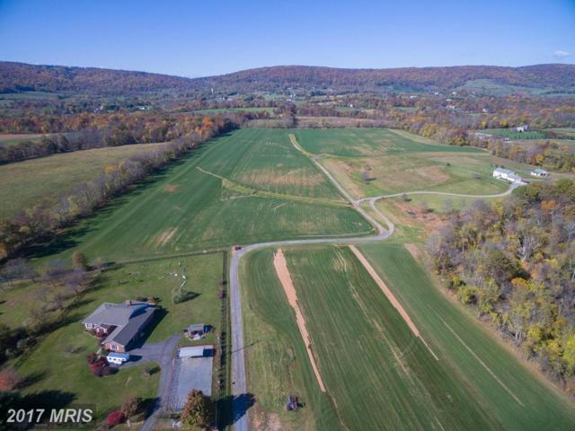 Yellow Schoolhouse Road, Round Hill, VA 20141 (#LO9806839) :: LoCoMusings
