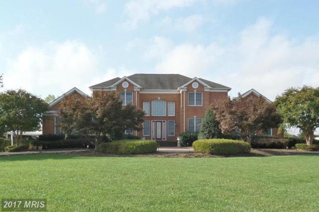 22727 Airmont Hunt Drive, Ashburn, VA 20148 (#LO9877991) :: LoCoMusings