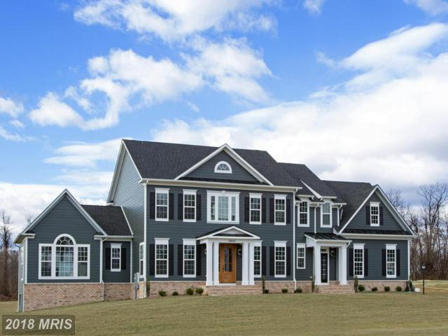 Brandy Ridge, Purcellville, VA 20132 (#LO9882760) :: Pearson Smith Realty
