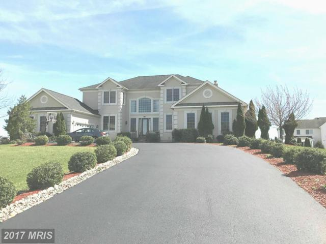 22807 Valley Preserve Court, Ashburn, VA 20148 (#LO9892830) :: LoCoMusings