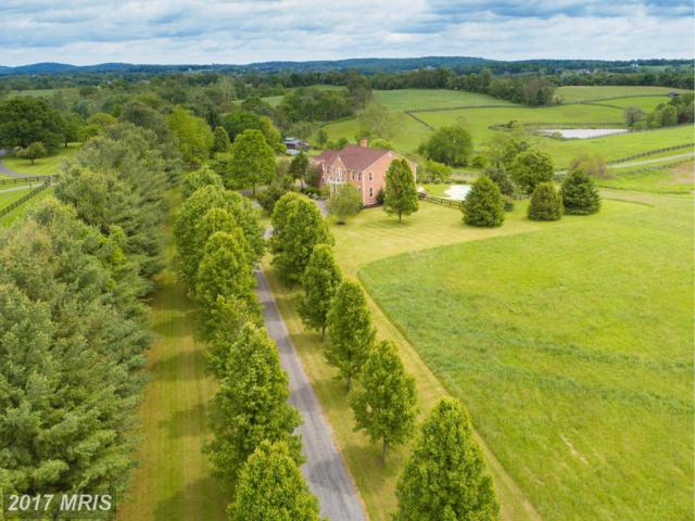 16050 Hamilton Station Road, Waterford, VA 20197 (#LO9939228) :: Pearson Smith Realty