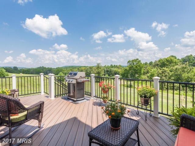 13160 Waterford View Court, Lovettsville, VA 20180 (#LO9987524) :: Pearson Smith Realty