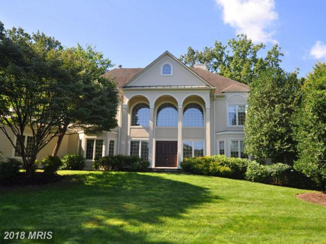 11387 Highbrook Court, Sterling, VA 20165 (#LO9998972) :: Pearson Smith Realty