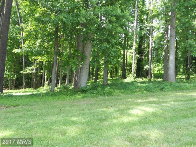 Hickory Rd, Lancaster, VA 22503 (#LV9707073) :: Pearson Smith Realty