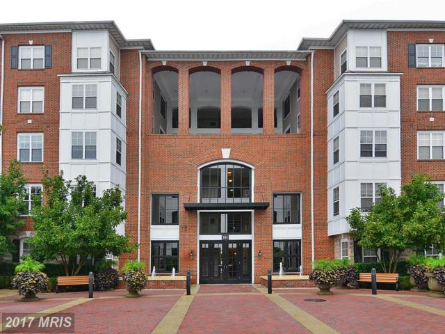 501 Hungerford Drive #328, Rockville, MD 20850 (#MC10016976) :: LoCoMusings