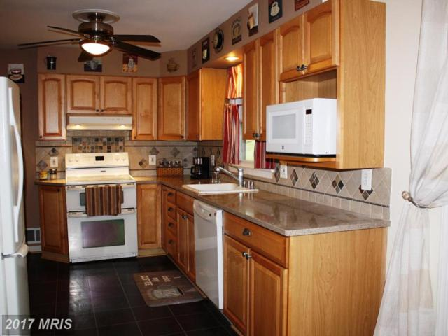17408 Flagstone Drive, Germantown, MD 20874 (#MC9994115) :: Pearson Smith Realty