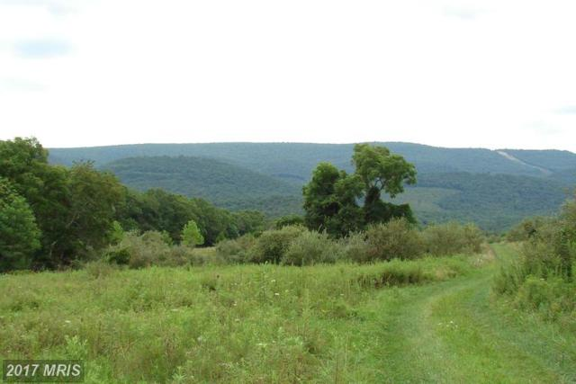 19 Harnest Hills S/D, Great Cacapon, WV 25422 (#MO8716150) :: LoCoMusings