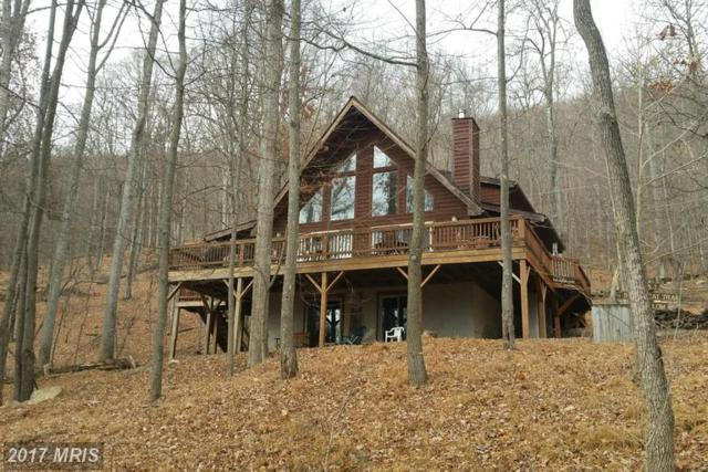 55 Bobcat Trail, Berkeley Springs, WV 25411 (#MO9751658) :: LoCoMusings