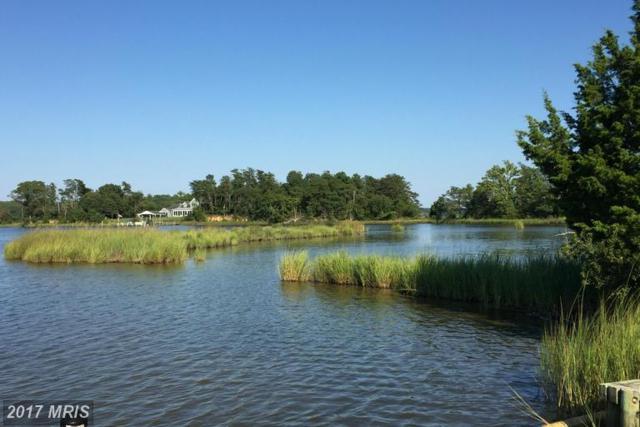 Island Point Road, Heathsville, VA 22473 (#NV9683482) :: LoCoMusings