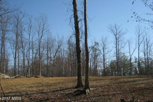 Mountain Track Road, Orange, VA 22960 (#OR8274558) :: LoCoMusings