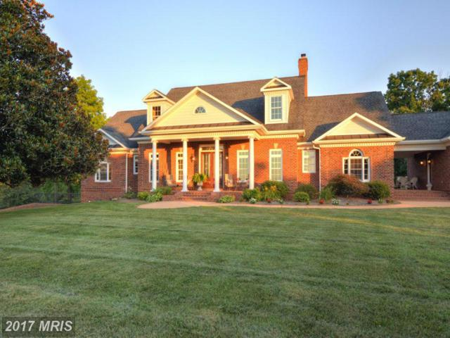 10074 High Point Road, Somerset, VA 22972 (#OR8727152) :: Pearson Smith Realty