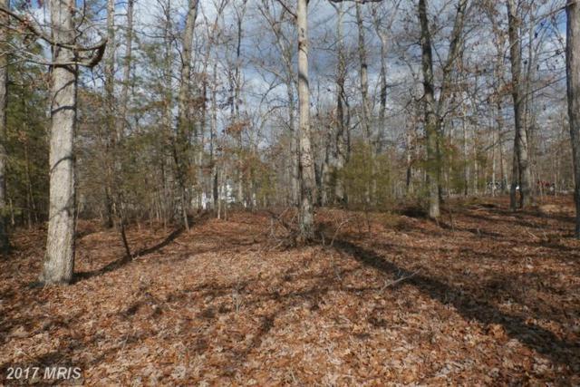 Old Plank Road, Locust Grove, VA 22508 (#OR9665698) :: LoCoMusings