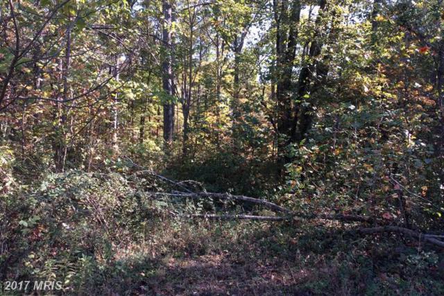 Colonial Lane, Locust Grove, VA 22508 (#OR9775126) :: LoCoMusings
