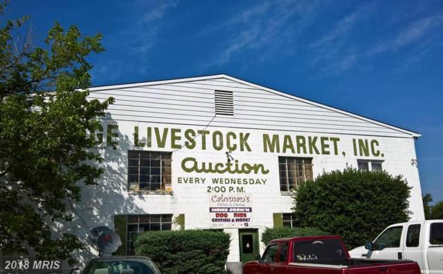 15415 James Madison Highway, Gordonsville, VA 22942 (#OR9808641) :: Keller Williams Pat Hiban Real Estate Group