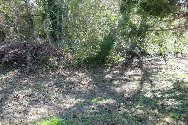 0 Pineview Lane, Pamplin, VA 23958 (#OT8442421) :: LoCoMusings