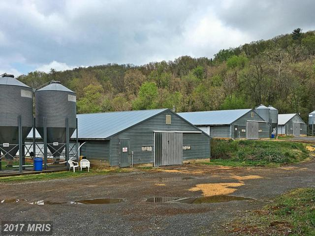 1980 Balkamore Hill Road, Stanley, VA 22851 (#PA9641056) :: Pearson Smith Realty