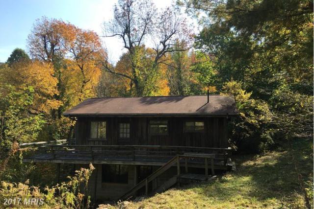 180 High Ridge Road, Stanley, VA 22851 (#PA9793877) :: LoCoMusings