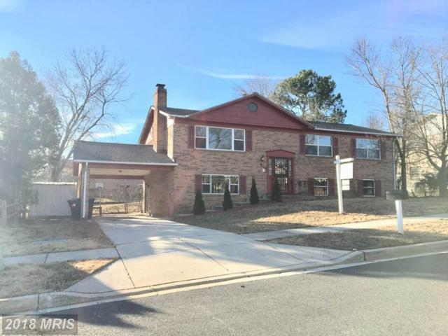 9619 Windermere Turn, Fort Washington, MD 20744 (#PG10108778) :: The Gus Anthony Team