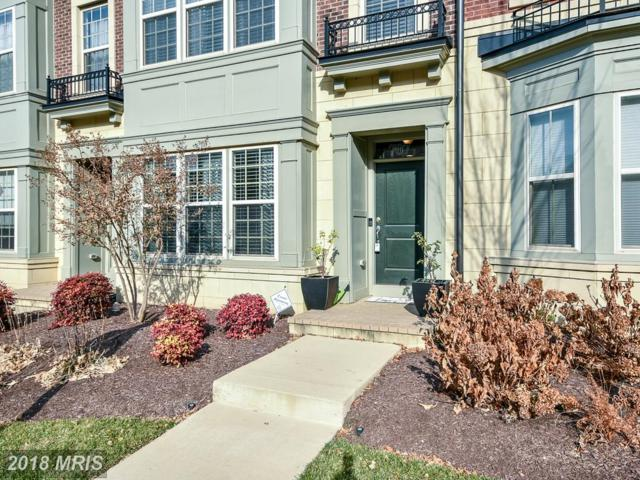 707 River Mist Drive, Oxon Hill, MD 20745 (#PG10113846) :: Pearson Smith Realty