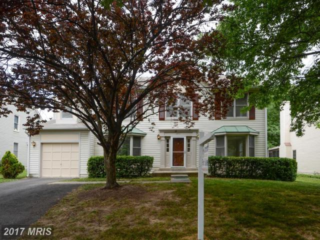 3510 Cherryvale Drive, Beltsville, MD 20705 (#PG9976851) :: Pearson Smith Realty
