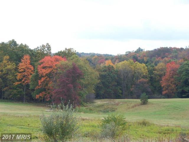 5859 Snowy Creek Lane, Corinth, WV 26764 (#PR8376497) :: LoCoMusings