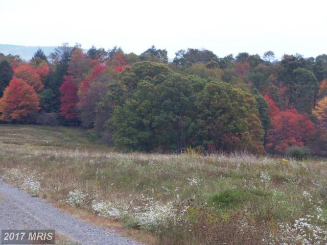 58 Snowy Creek Lane, Corinth, WV 26764 (#PR8376517) :: LoCoMusings
