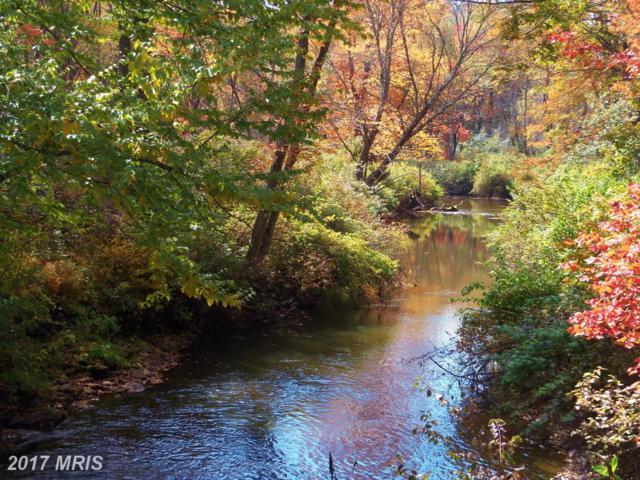 2930-LOTS Mountain Laurel Way, Corinth, WV 26764 (#PR9510781) :: LoCoMusings
