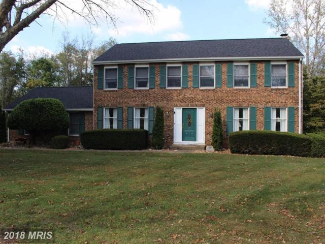 14182 Wyngate Drive, Gainesville, VA 20155 (#PW10066165) :: Advance Realty Bel Air, Inc