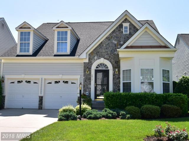 6017 Calumet Court, Gainesville, VA 20155 (#PW10256956) :: Charis Realty Group