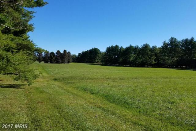 16614 Gaines Road, Broad Run, VA 20137 (#PW9788548) :: LoCoMusings