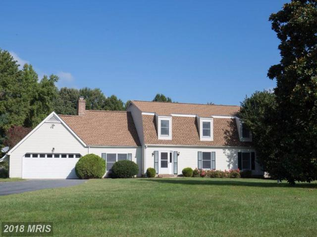 309 Hemsley Drive, Queenstown, MD 21658 (#QA10060860) :: Pearson Smith Realty