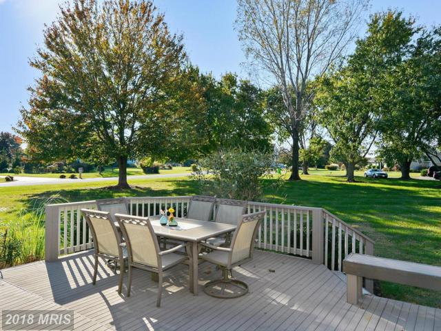 39 Greenwood Shoals Shoals, Grasonville, MD 21638 (#QA10193089) :: The Gus Anthony Team