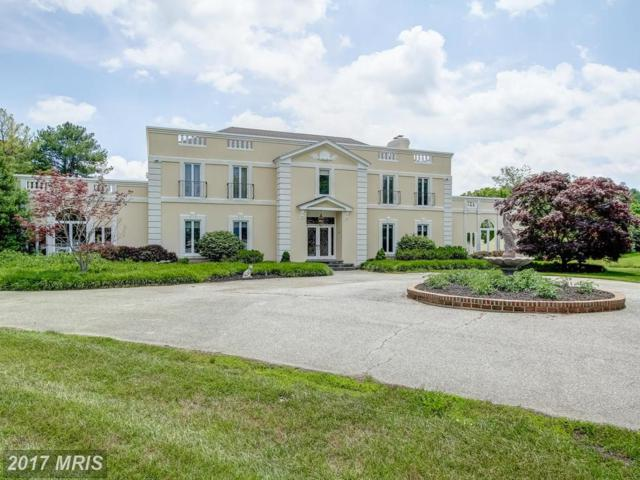 140 Heather Drive, Queenstown, MD 21658 (#QA9656316) :: Pearson Smith Realty
